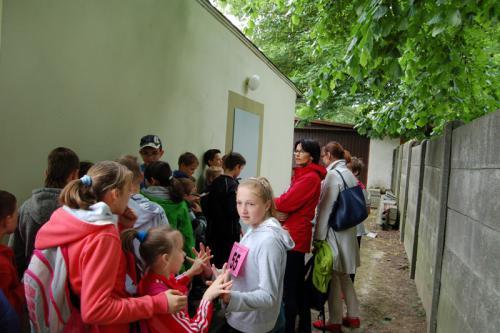 Galeria XXVII Bieg Baborowa